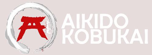 Aikido Kobukai | Sensei Salvador Chaves